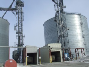 Trucks haul the corn to the plant where it is transformed into ethanol.