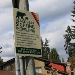 Bear Warning on Riverside Drive, North Vancouver