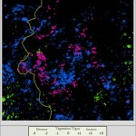 Mapping vegetation in Darfur using satellite imagery.