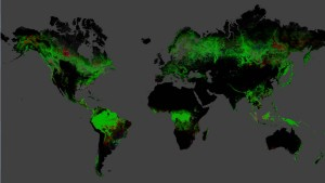 Global forest change from 2000-2012. Map created by the University of Maryland's Department of Geographical Sciences.